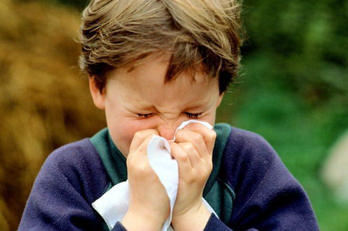 Allergia agli acari della polvere: consigli pratici